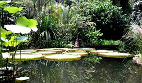 Best Gardens In Penang